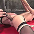 Amber Rayne bound and giving great head