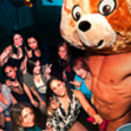 The Dancing bear sex party